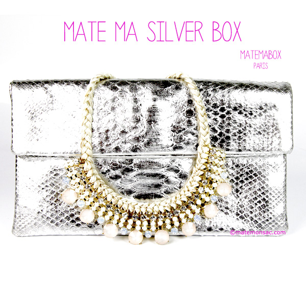 matemabox-argent-pochette-python-collier
