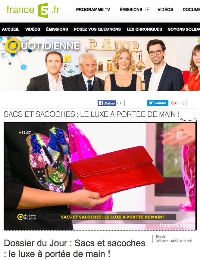 la-quotidienne-france5-les-sacs-le-luxe-a-portee-de-main-mate-mon-sac-pochette-python